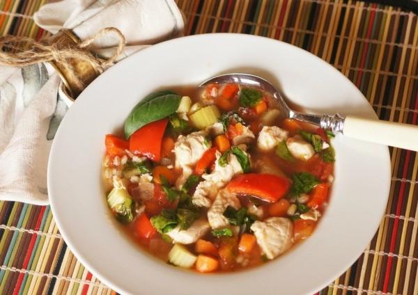 Instant Pot Chicken Vegetable Soup Recipe Thriftyfun