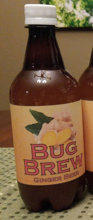 Best Glue for Sticking Custom Labels on Plastic Bottles - bottle of ginger beer