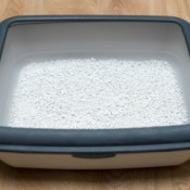 Fresh cat litter in a litter box.