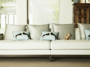 White couch with a small stuffed bear and accent pillows with birds.