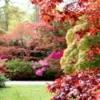 Autumn Garden full of color.
