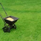 Lawn fertilizer in spreader on grass