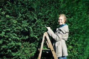 Woman on a ladder next to a shrubbery.