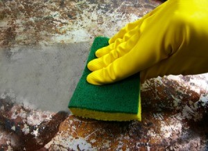 Rubber glove cleaning a burnt pan with a sponge.