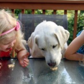 Dog sitting in between two blond girls, all of them eating a small cookie.