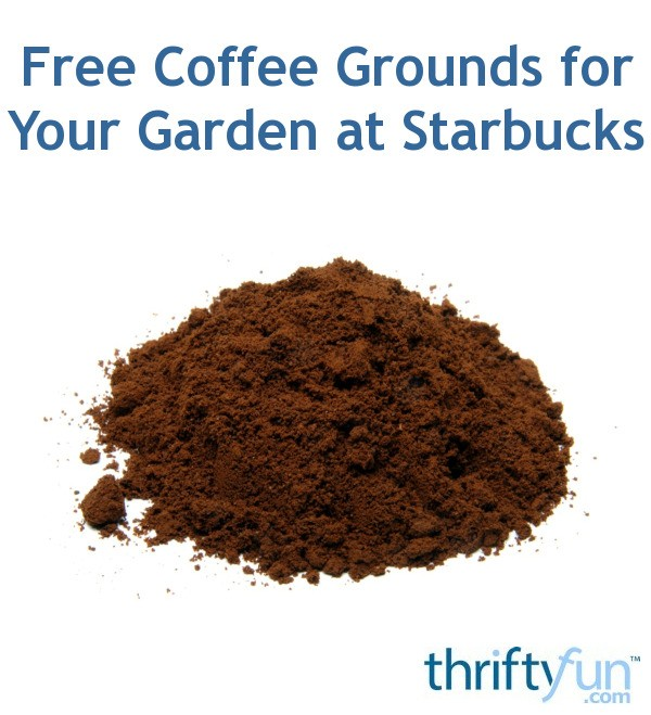 Free coffee grounds for your garden at starbucks thriftyfun - Are coffee grounds good for your garden ...