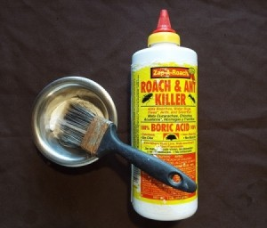 A bottle of Roach and Ant Killer containing boric acid, next to a paint brush dipped in boric acid powder.