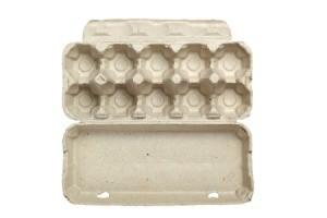 Dozen egg carton open on white background