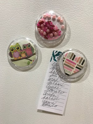 Clear Plastic Cap Magnets
