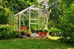 Greenhouse in a garden.
