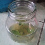 Make Your Own Essential Oil - essence poured into a jar