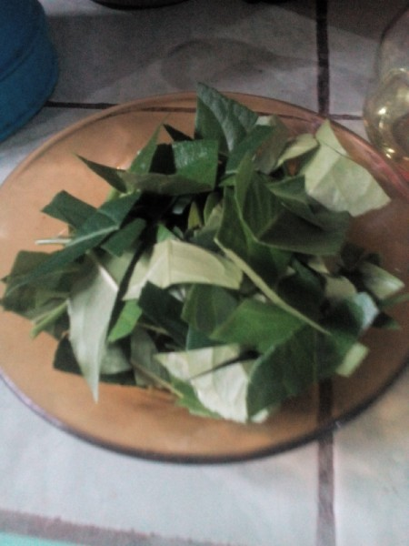 Make Your Own Essential Oil - cut up lemon leaves