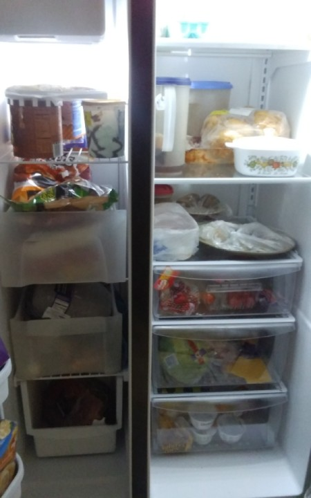 A two door fridge that is well organized.
