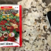 File Flower Seeds to Help Sprouting - packet of nasturtium seed and a nail file