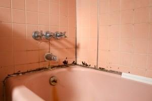 Old bath in need of repair.