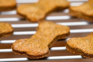 Dog biscuits on a cooling rack.