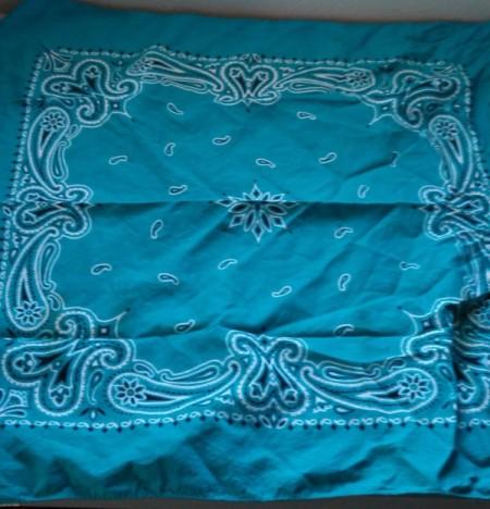 Bandana Butterfly - blue bandana