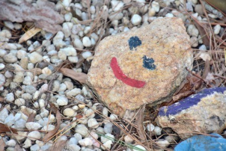 Garden of Smiles - Painted Rock