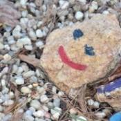 Garden of Smiles - Painted Rock