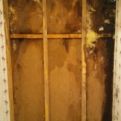Financial Help to Remove Black Mold and Repair Walls - mold inside bathroom walls