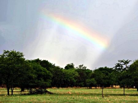 Rainbow in the Sky - partial rainbow