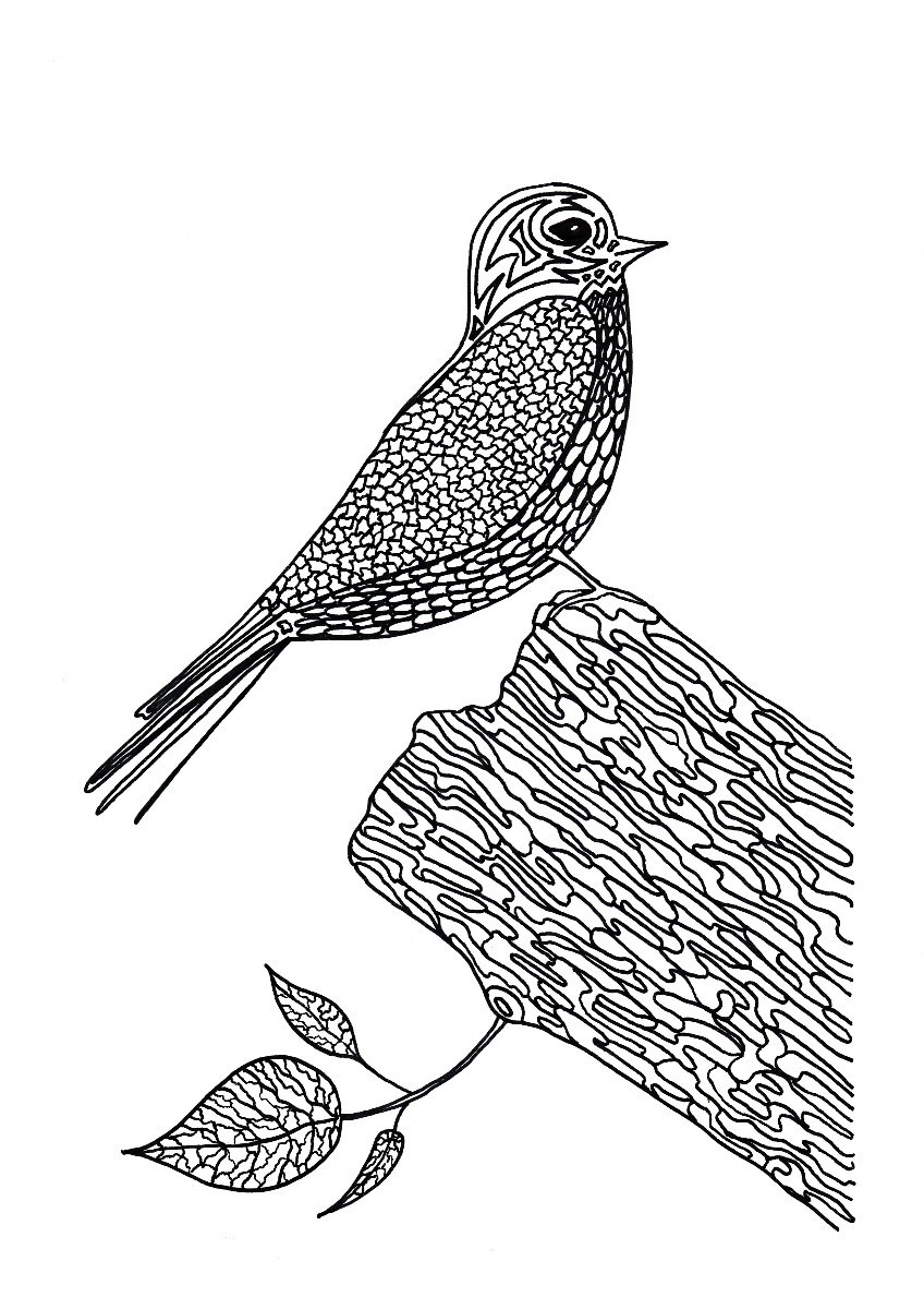 Lunchtime Bird Coloring Pages | ThriftyFun