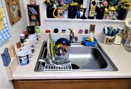 Hand Washing Dishes Thriftyfun