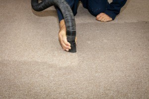 Vacuuming up water on a carpet.