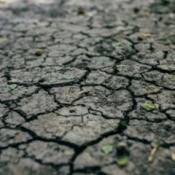 Dry cracked dirt.