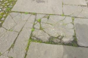 Broken garden path.