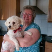 Dog Won't Eat Dog Food - woman holding a Bichon