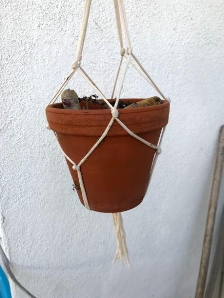 DIY Macrame Plant Hangers - pot hanging