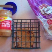 Bird Suet Substitute - peanut butter on raisin bread in a suet holder