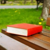 Red book on a park bench.