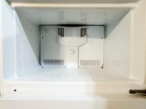 A clean freezer.