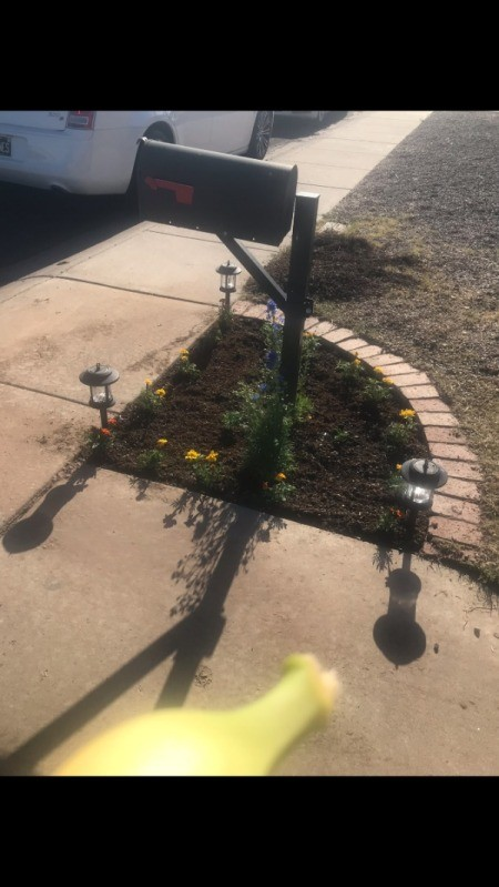 Getting Rid of Grass and Weeds