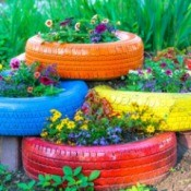 Colorful Tires used as garden beds.