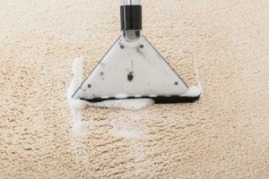 Carpet shampooer on light carpet.