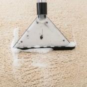 Carpet shampooer on light carpet.