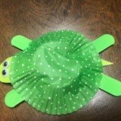 Easy Turtle Craft for Kids - cup cake liner turtle
