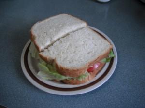 Cut Tomato Sandwich on plate