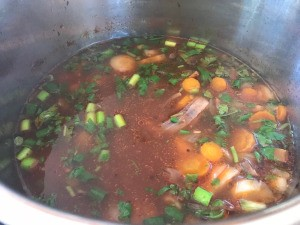 Beef Shank Vegetable Broth Soup with added green onions