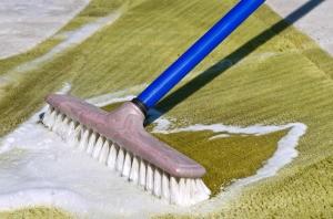 Leaky carpet shampooer brush on olive green carpet.