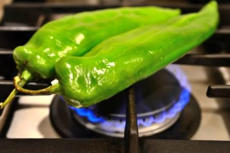 blacking chilis
