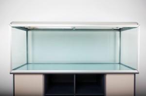 Empty fish tank.