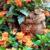 Stillness in Bloom - bust of a head surrounded by orange flowers