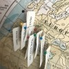 Push Pin Travel Map For Less - ball head push pins with paper labels taped on
