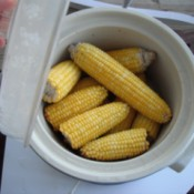 6 ears of cooked corn in a crockpot.