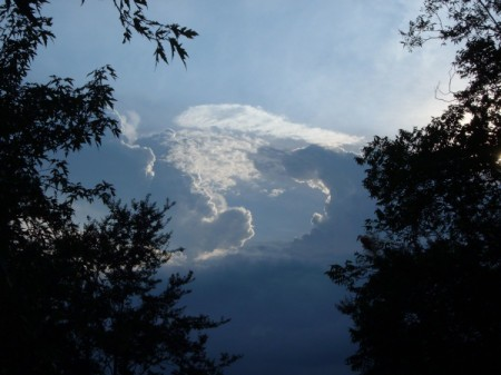 Faces in a Cloud - cloud formation