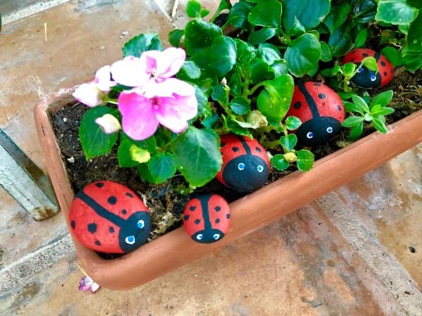 Stone Ladybug Garden Ornaments   Ladybug Rocks In A Planter